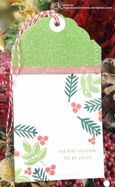 Avery Elle Christmas 5